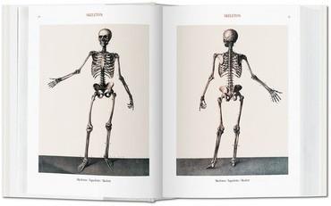 The Complete Atlas Of Human Anatomy And Surgery. Atlas De An