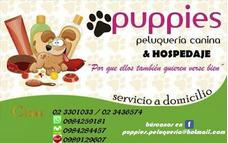 Peluquería Y Hospedaje Canino / Crematorio De Mascotas!