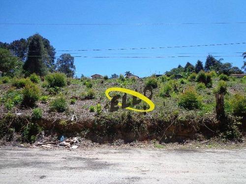 Terreno À Venda, 125 M² Por R$ 90.000,00 - Chácara Recanto Verde - Cotia/sp - Te0870