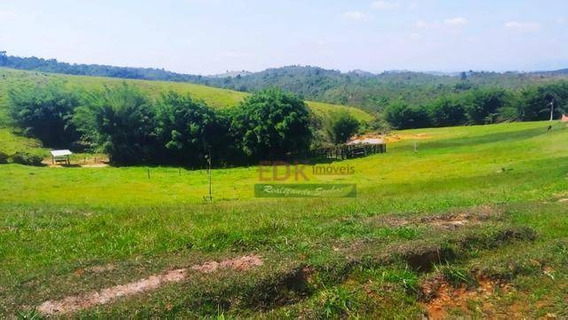 Terreno À Venda, 20000 M² Por R$ 130.000,00 - Ponte Nova - Lorena/sp - Te1487