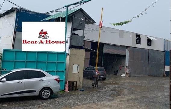 Bodega Galera Alquiler Panamericana Panama Inmobiliaragua