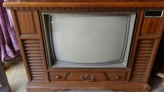 Televisor Modular De Cedro Marca. Zenith Antig It