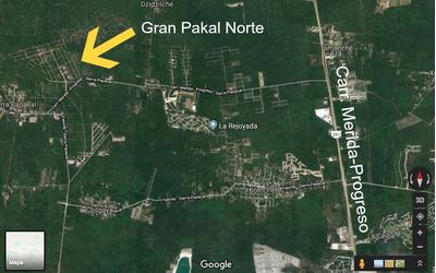 Terreno De Inversion En Venta En Gran Pakal Norte. A 15 Mins De Merida.