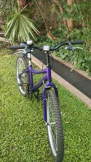 Bicicleta Schwinn Rodado 20 Impecable