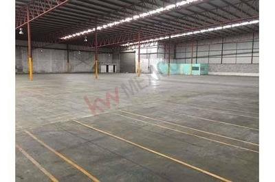 Bodega Industrial, Ciudad Industrial, Torreón, Coah.