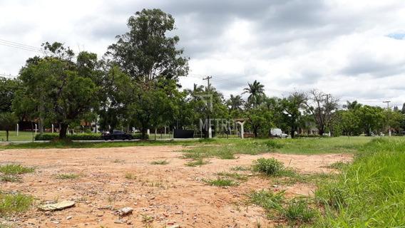 Terreno À Venda Em Centro - Te005166