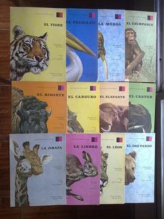 12 Revista Colección Mundo Animal Editorial Sigmar 1973