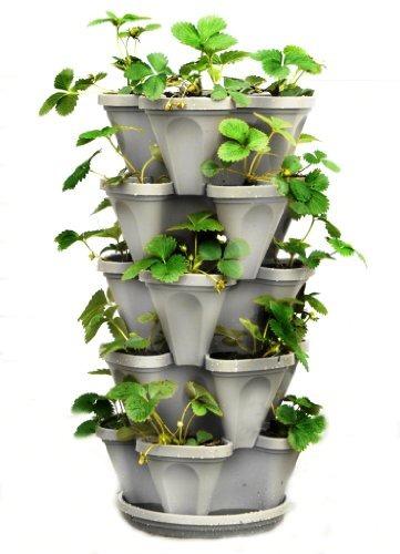 Imagen 1 de 8 de 5 Tier Stackable Strawberry Herb Flower And Vegetable Plante