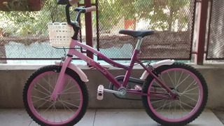 Bicicleta Olimpia Para Niños Rodado 16 Como Nueva