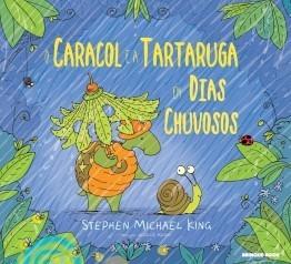 Caracol E A Tartaruga Em Dia Chuvoso - Brinque Book