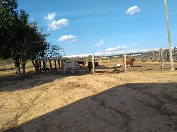 Fazenda Para Venda Em Dourados, Centro - 2000/2857_1-1452585