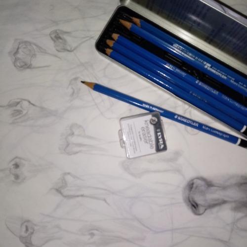 Arte Do Desenho Realismo