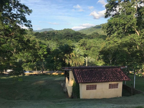 Chacara À Venda , Fazenda São José, Ref. 4342 L C