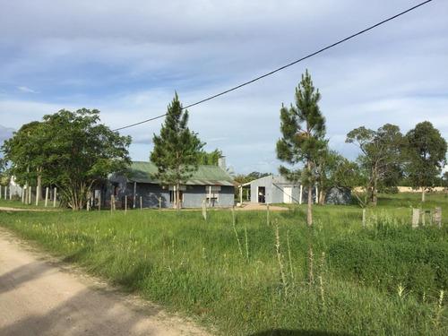 Venta Chacra En Santa Lucía,ruta 11 Y 81 Con Excelente Renta