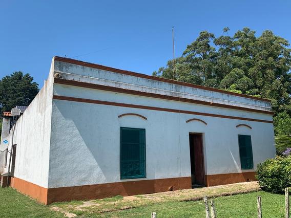 Campo En Treinta Y Tres Ganadero - Agrícola 604 Has.