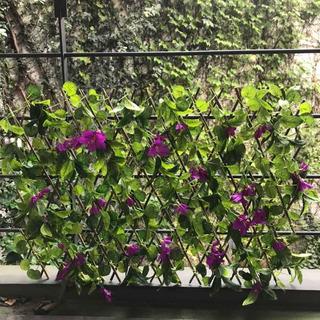 Cerco De Hiedra ( Plantas Artificiales)