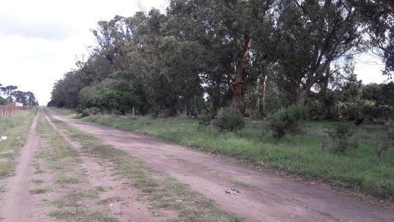 Terreno En Venta De 1034m2 Ubicado En Chapadmalal