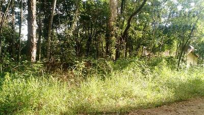 Terrenos Em Condomínio À Venda Em Atibaia/sp - Compre O Seu Terrenos Em Condomínio Aqui! - 1300836