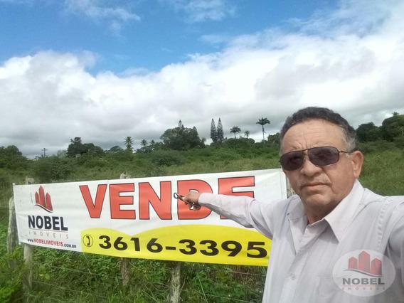 Chácara/sítio Com 3 Dormitório(s) Localizado(a) No Bairro Aviário Em Feira De Santana / Feira De Santana - 3635