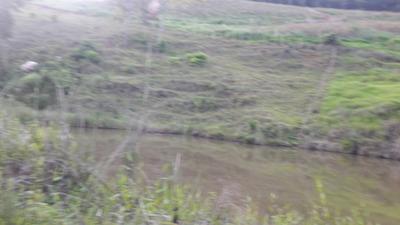 Chácaras Com Fundos Para Lagoa