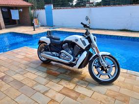 Harley Davidson V-rod Muscle 1250cc Impecavel