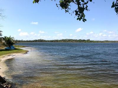 Terreno Na Lagoa Da Cutia 1000,00 M2
