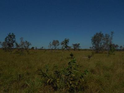 Fazenda Em Araguacema - To, P/ Plantio De Soja - 302