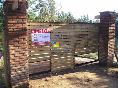 Sitios En El Tabo De 300 Mtos 2, Proyecto Sector Los Domos