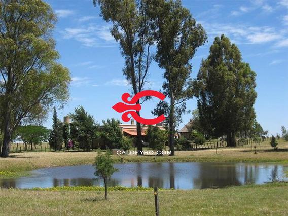 Campo En Solís De Mataojo. Ref: 2020
