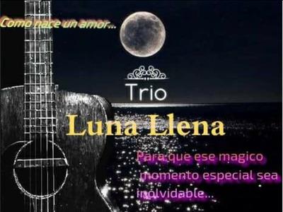 Serenatas, Trío Musical, Bohemia En Veracruz Puerto