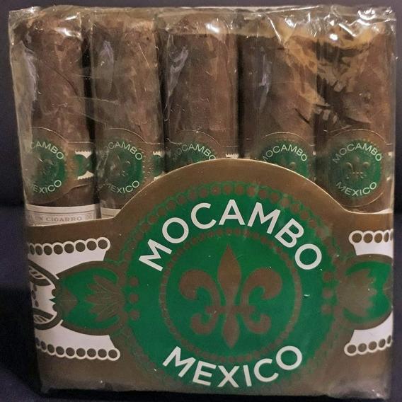 Mocambo Robustos Cigarros Special Pack X5 Robusto Puros Puro