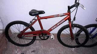 Bicicleta Rodado 16 , Dolphin