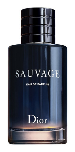 Perfume Importado Hombre Dior Sauvage Edp - 100ml