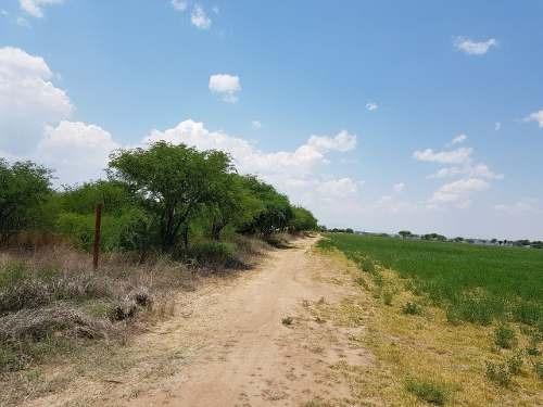 (crm-1621-2224) Aa/ Terreno 124 Has Guanajuato San Luis De La Paz Jamaica