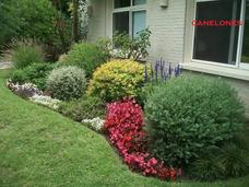 Jardín. Jardinería Profesional. Diseño Y Mantenimiento.