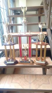 Trofeos Deportivos Usados
