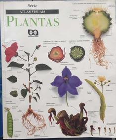 Livro Série Atlas Visuais - Plantas
