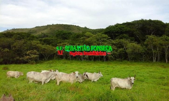 Vendo Belíssima Fazenda Em Itanhandu, Sul De Minas - 1077