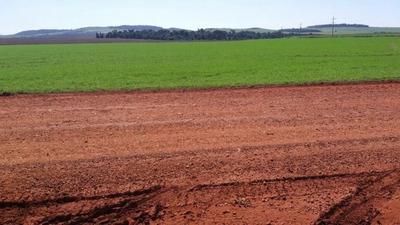 Fazenda Para Venda Em São Paulo, Área Grande São Paulo São Paulo - Eucalipto R$ 720.000.000 - 36368