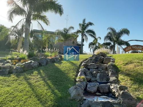 Casa En Venta Y Alquiler, Punta Ballena- Ref: 401
