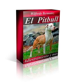 El Pitbull Terrier Adiestramiento Y Mas