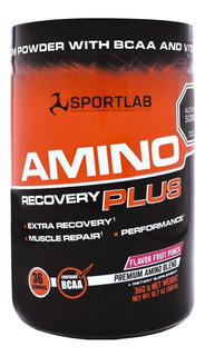 Amino Recovery Plus 360gr