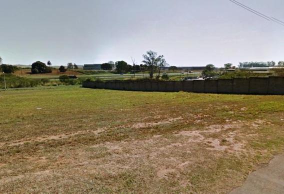 Terreno Industrial Para Venda Em Leme, Serelepe - V-015