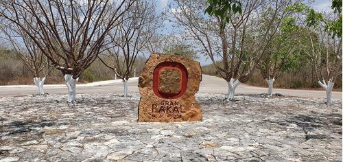 Imagen 1 de 3 de Venta De Lote Residencial En Gran Pakal Norte, Sierra Papaca