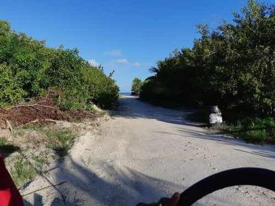 Venta De Terreno Holbox Muy Cerca Del Mar 450m2