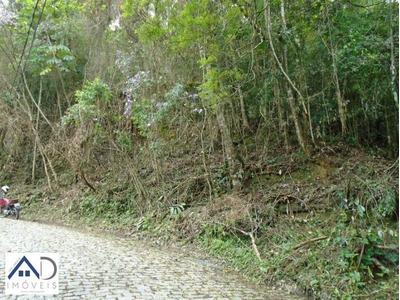 Terreno Para Venda Em Petrópolis, Quitandinha - 183