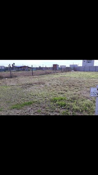 Campo En Venta En Campiñas De Piñero.