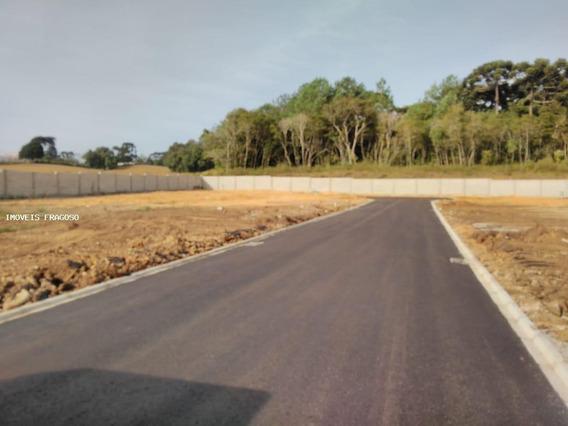 Terreno Para Venda Em São José Dos Pinhais, São Marcos - 50.232_1-1441232