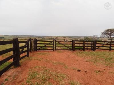 Fazenda Em Campo Grande - Ms, Dupla Aptidão - 245