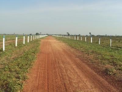Fazenda Em Colinas - Ma, Dupla Aptidão - 332
